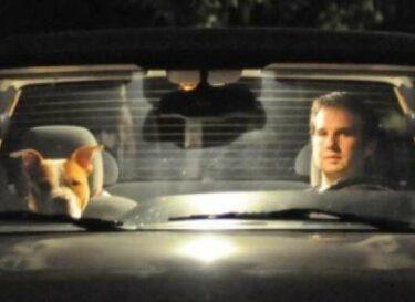 20120814 Hond vs SUV v01 e1344939608818