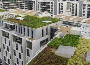 Adobe stock groen dak stad change inc