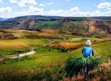 Adobestock 143961657 landbouwsector duurzaamheid