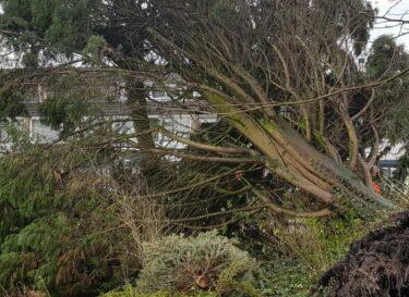 Adobestock 217486018 klimaatschade storm verzekeraars
