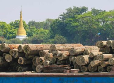 Adobestock 318946926 hout myanmar