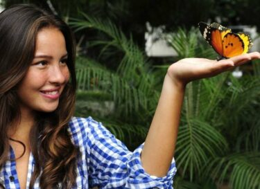 Adobestock bnp paribas am cdp rapporteren biodiversiteit cruciaal