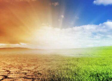 Adobestock klimaatverandering droogte gras