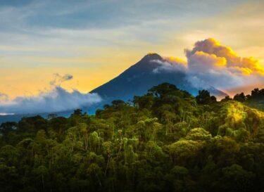 Adobestock vulkaan biodiversiteit