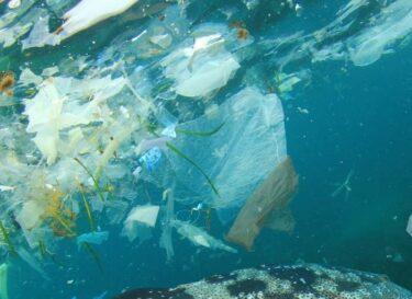 Adobestock water plastic vervuiling