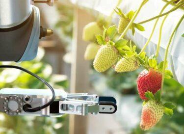 Agri food technieken