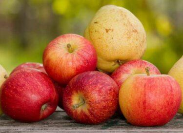 Appels en peren op een tafel