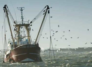 Boot vissen oceaan adobe stock