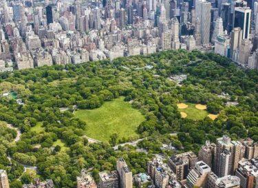 Central park autovrij