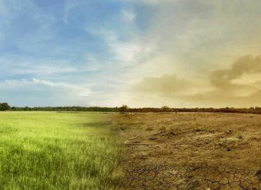 Drawdown klimaatverandering