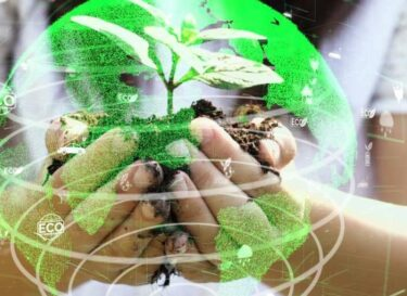 Duurzaam bol goren bomen handen adobe stock change inc