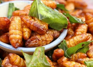 Gefrituurde insecten meelwormen straatvoedsel