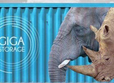 Giga rhino batterij container