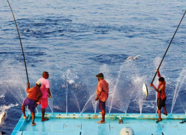 Hengel vissers