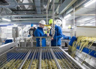 Lambwestonmeijer fabriek2