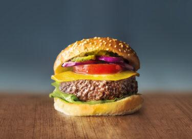 Mosa meat burger 2