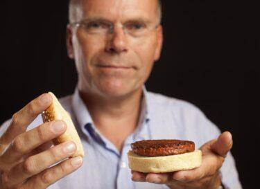 Mosa meat burger 2013 jpg