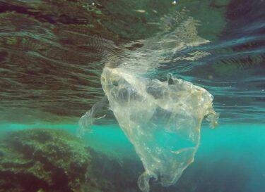 Plastic verpakkingen