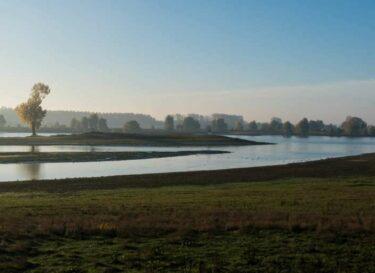 Uiterwaarden rivier nederland water