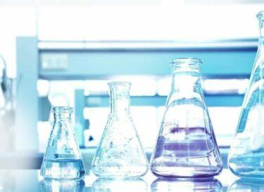 Witte biotechnologie dsm