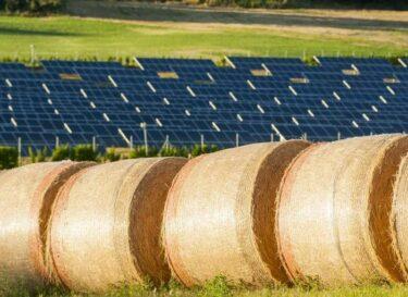 Zonnepanelen landbouw akkers