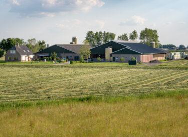 Zonnepanelen op boeren schuur